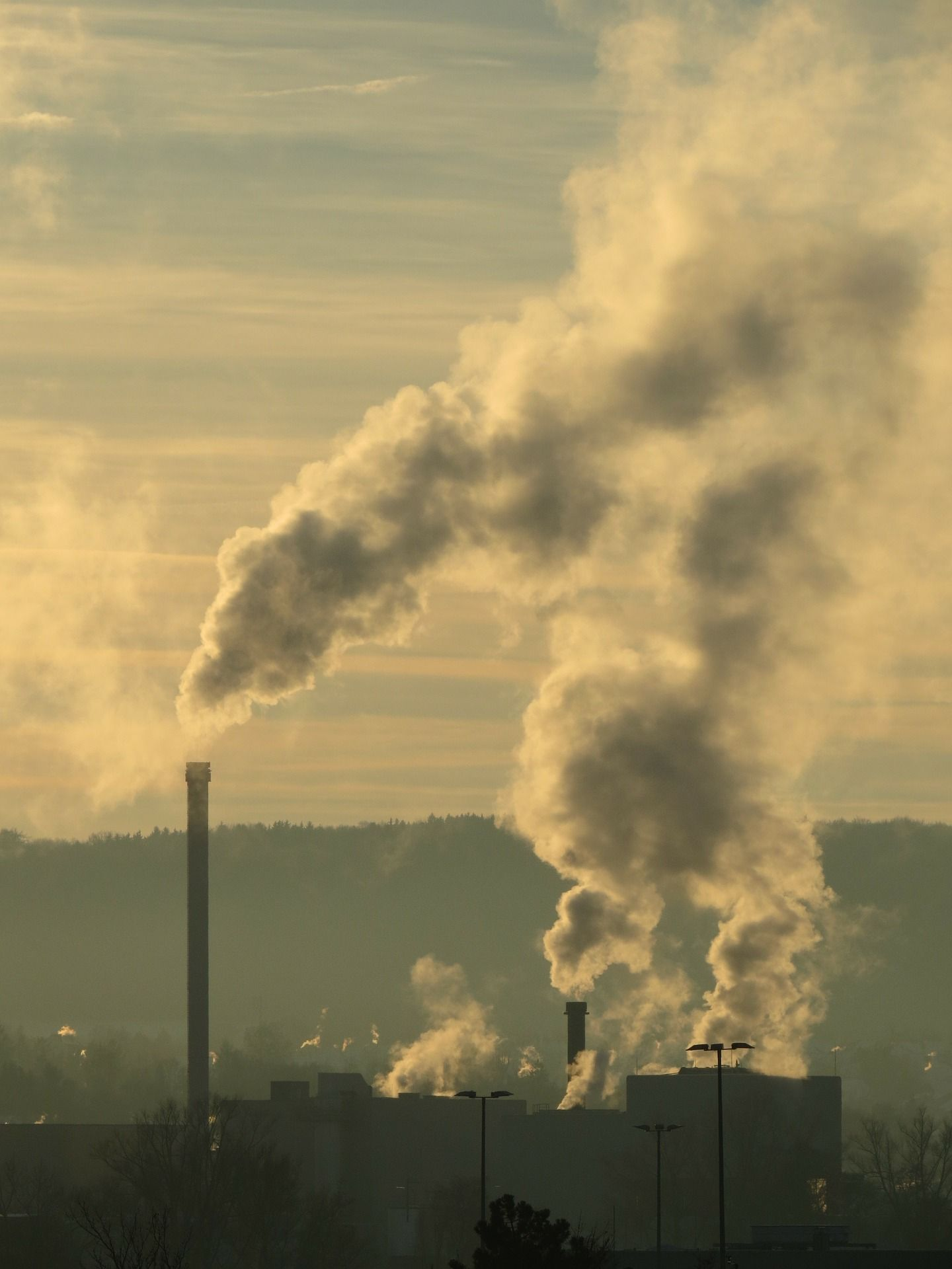 pollution and its various forms Water pollution is the contamination of water bodies, usually as a result of human activities  various chemical compounds found in personal hygiene and cosmetic.