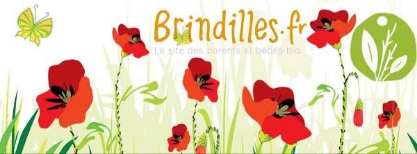 Photo de couverture du site Brindilles.fr