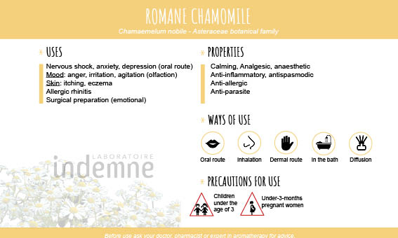 Roman Chamomile essential oil