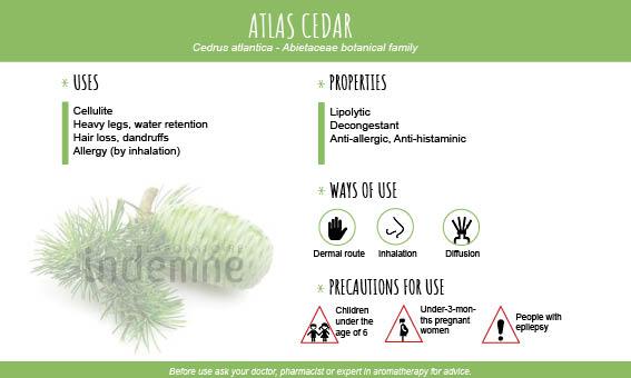 Atlas cedar essential oil