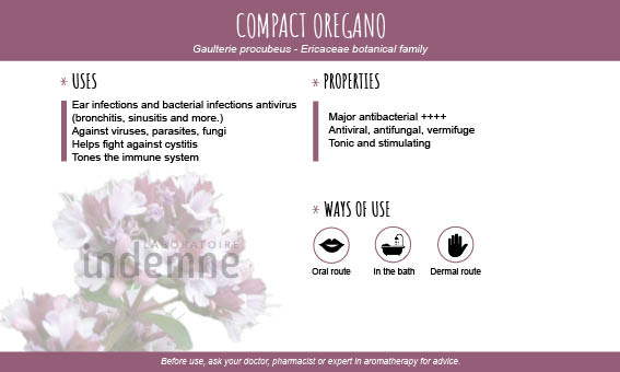 Compact oregano essential oil